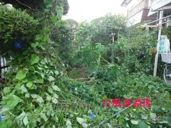 台風 010.jpg