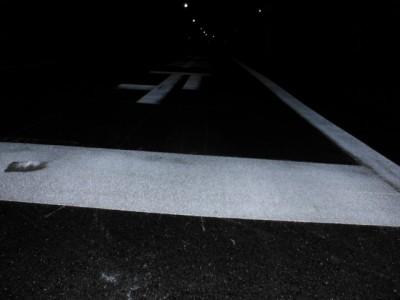 夜桜 010.jpg