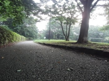 朝の散歩 003.jpg