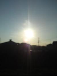 SN3J0512.jpg