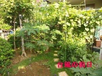 台風 006.jpg