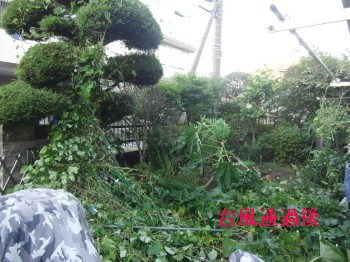 台風 009.jpg